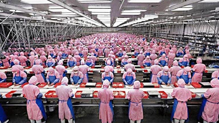 Državni organi bez najava da kontrolišu primenu zaštitnih mera u svim fabrikama
